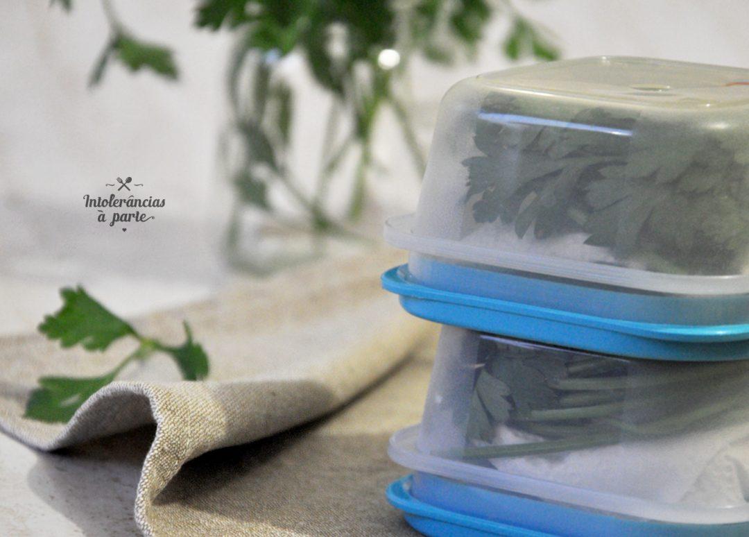 ervas aromaticas conservar no frigorifico