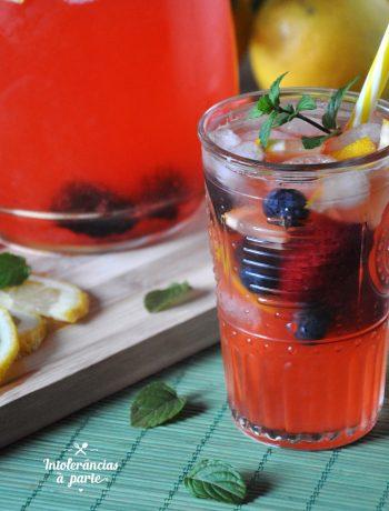 limonada de frutos vermelhos