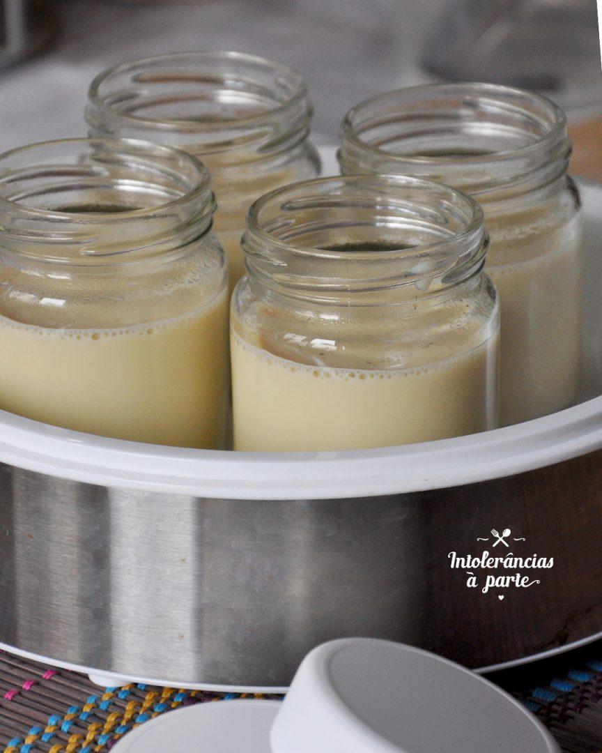 Iogurtes Vegetais de Baunilha